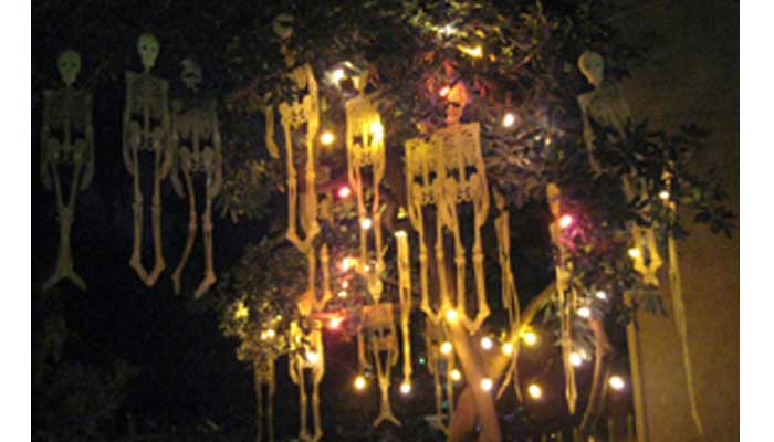 Halloween skeleton decorations hanging from a tree
