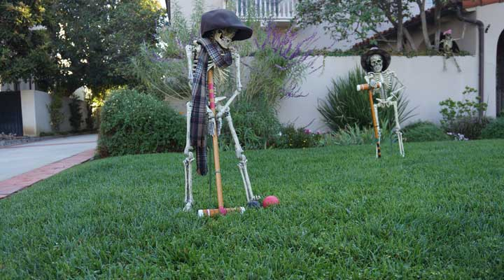 Halloween Decorating Ideas to Scare up a Great Yard | Public ...