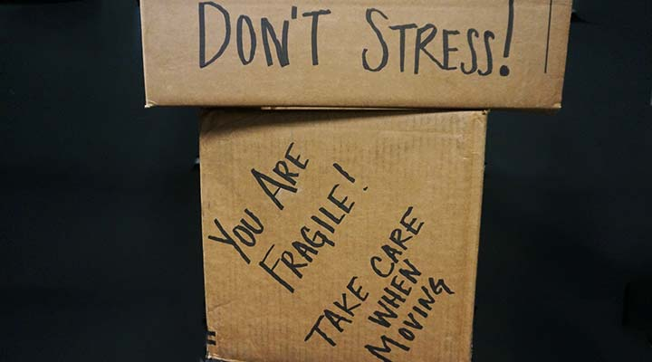moving anxiety boxes