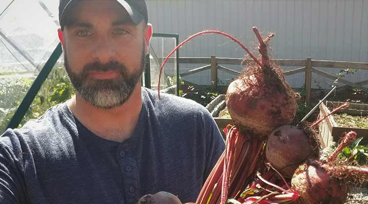 gardener holding up freshly grown red onions