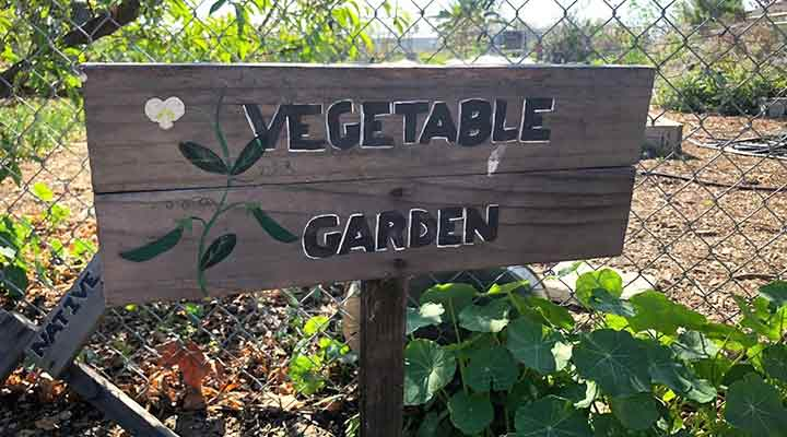 vegetable garden sign on chain link fence