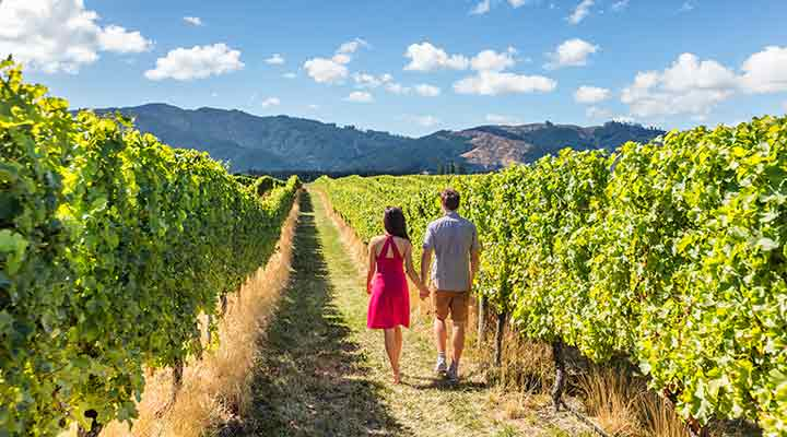 moving to california wine country