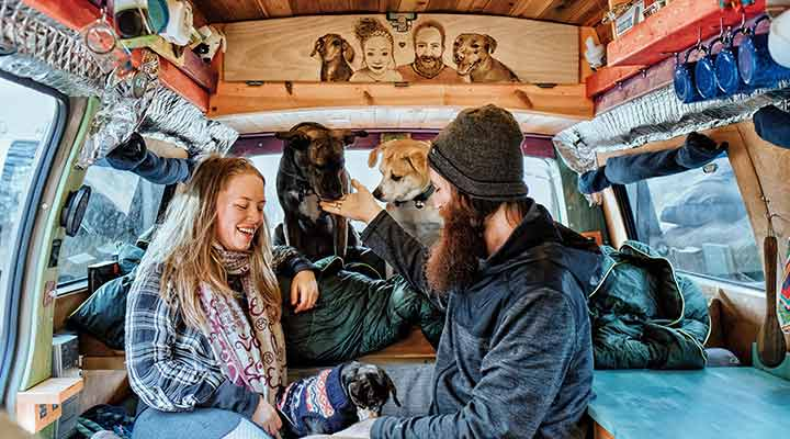 van life with dogs