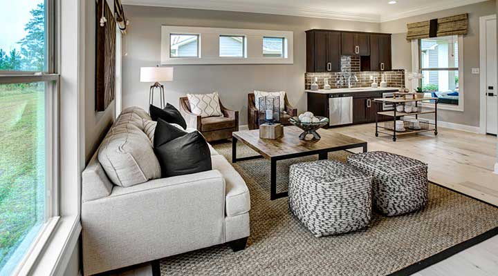Multigenerational homes open floor plan with couches and kitchnette