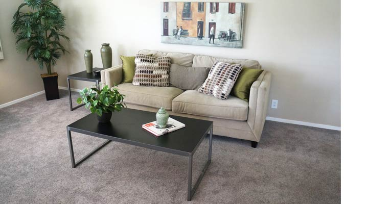 living room staged to sell